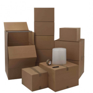 1 Bedroom Home Moving Kit